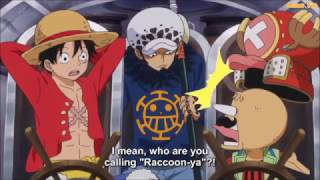 One Piece Funny Moment - Law call Chopper as Raccoon in Twice