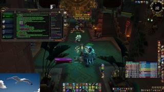 Dazar Alor | Seagulls raiding World of Warcraft