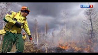 Из-за аномальной жары сразу в шести районах области введен режим повышенной пожароопасности