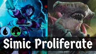 ALL THE COUNTERS!! Simic Proliferate (Evolution Sage + Flux Channeler) | MTG Arena | Deck Of The Day