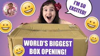 *WORLD RECORD* BIGGEST REBORN BOX OPENING EVER! HOW MANY BABIES ARE THERE?