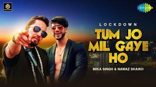 Tum Jo Mil Gaye Ho – Mika Singh – Nawaz Shaikh