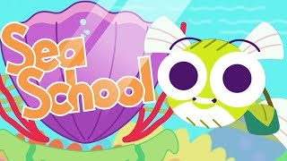 Learning For Kids | Learning Colors - Sea School | Toddler Fun Learning | Color Learning For Kids