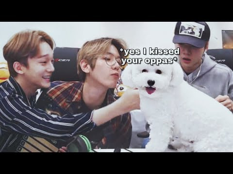 Vivi stealing your oppas for 5 minutes straight (Baekhyun, Sehun, Chen)