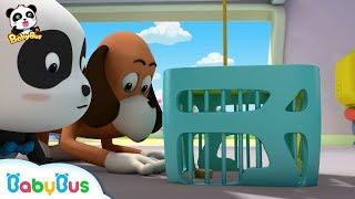 Help! Someone Stole Baby Panda's Mooncakes   Mid-Autumn Festival   Panda Cartoon   BabyBus