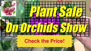Orchids Plant Sale - Check the Price at Toronto Soos Orchids Show 2019