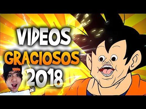VIDEOS GRACIOSOS Y MOMENTOS DIVERTIDOS - FEBRERO 2018 - VIDEOS RANDOM 2018