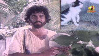 Chattaniki Kallu Levu Movie Songs - Chattaniki Kallu Levu Song - Chiranjeevi, Madhavi, Lakshmi