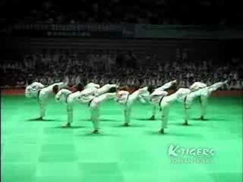 Ktigers Taekwondo Promotion Film