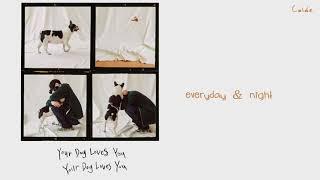 Colde - Your Dog Loves You (Feat. Crush) lyrics (HANGUL/ROMANIZATION/ENGLISH)