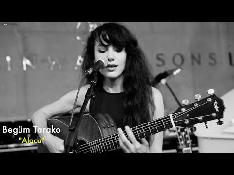 Begüm Tarako - Alaca // Groovypedia Studio Sessions