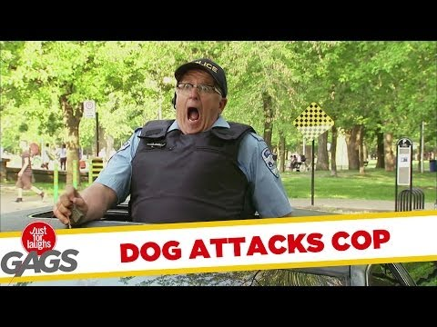 "Hidden camera show: Dog ""attacks"" cop"