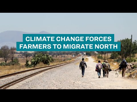 Farmers in Central America migrating to survive