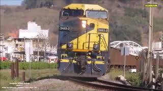 Không dám nhìn vào những tai nạn tàu lửa với động vật ( Train vs Animal)
