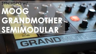 Moog Grandmother Semimodular Synth (Stranger Things-inspired Sequence) - SYNTHSPO #002
