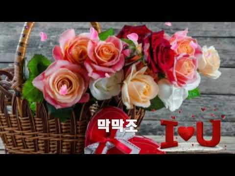 신웅 ~ 중년들이 좋아하는 듣기좋은 트로트 메들리 26곡