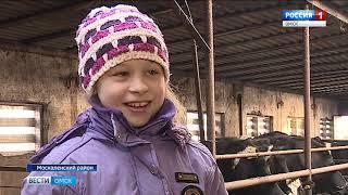 Москаленский, Одесский и Исилькульский районы области выбились в лидеры по закупу молока