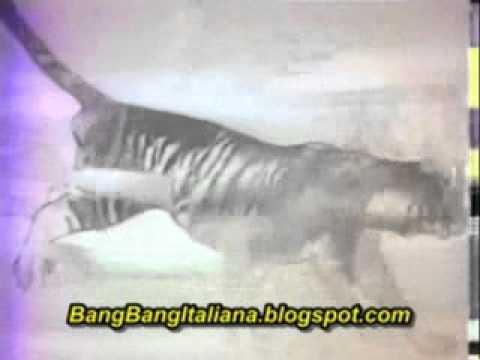 Baixar Bang Bang à Italiana - Vinheta TV Record