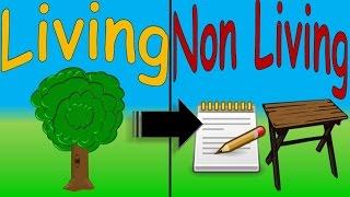 Living and Non Living Things for Kids Cosas Vivas y No Vivas en Inglés Niños FIESTIKIDS