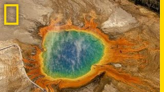 Five Must-See Attractions in Yellowstone   National Geographic