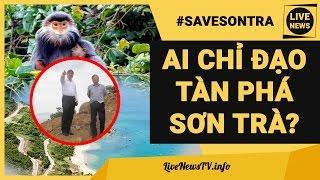 Ai Đã Chỉ Đạo Vụ Tàn Phá Bán Đảo SƠN TRÀ Xây Biệt Thự Ở Đà Nẵng? #SAVESONTRA #VOOCCHAVA