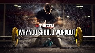 Why You Should Workout!