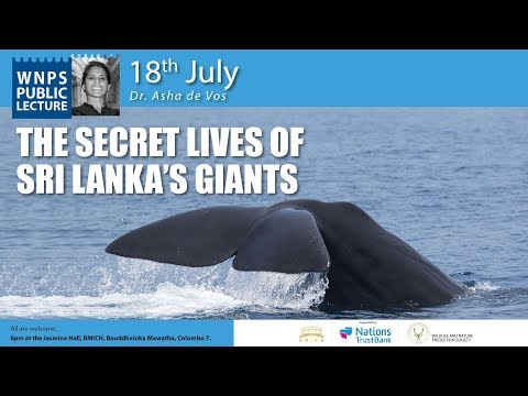 WNPS PUBLIC LECTURE  THE SECRET LIVES OF SRI LANKA'S GIANTS By Dr. Asha de Vos