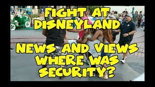 Sir Willow Responds to Fight at Disneyland- What Happened and Where Was Security? | News and Views