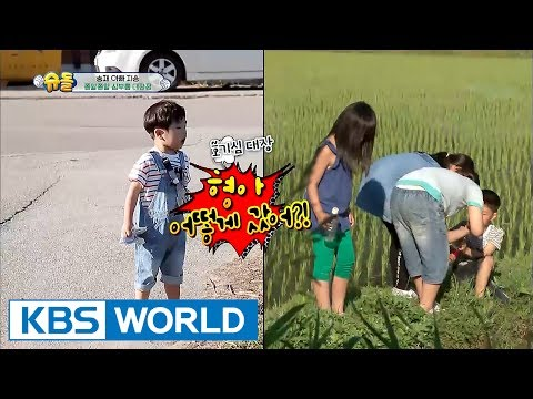 Who's the cute baby in yellow rubber shoes? [The Return of Superman / 2017.06.25]