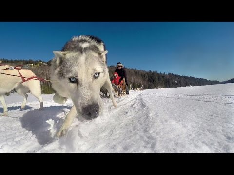JPdL Vitamine Canada - Voyage Incentive d'hiver
