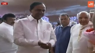 Watch: CM KCR At Ramoji Rao Grand Daughter Wedding..