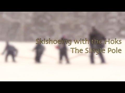 Hoks and the Single Pole