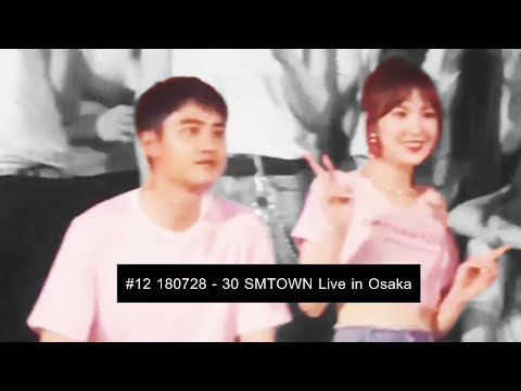[wensoo] EXO D.O. & RED VELVET WENDY moments #12 - SMTOWN Live in Osaka