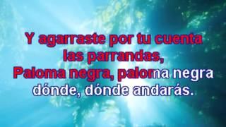 Karaoke Lola Beltrán - Paloma negra