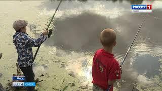 В Кировском округе Омска продолжается реконструкция прибрежной части озера Кирпичка