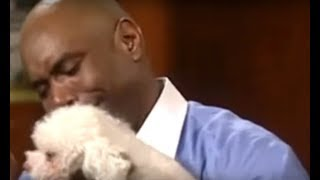Judge Judy Lets Dog Find Its REAL Owner Inside Court