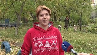 Волонтеры из Омска нашли собаку, отставшую от спортсменов из Барнаула