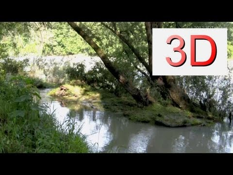 3D Video: River & Forest Relaxation #4