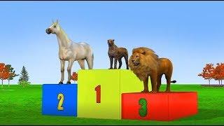 Videos For Kids   Wild Animals Running Race