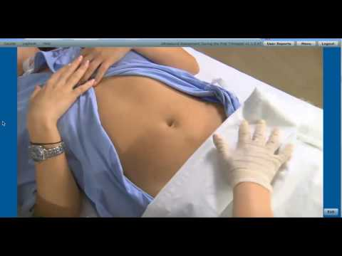 SIMTICS demo of example sonography module (Ultrasound of the First Trimester