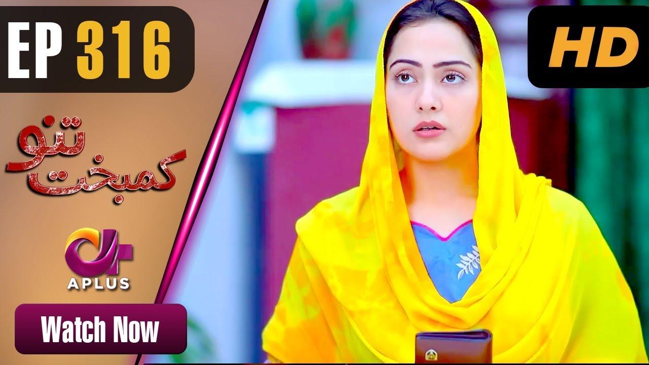 Kambakht Tanno - Episode 316 | Aplus Dramas | Nousheen Ahmed, Ali Josh |  Pakistani Drama