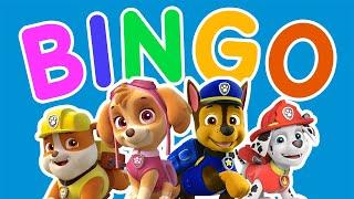 BINGO Song With PAW PATROL Pups | Kids Songs & Nursery Rhymes