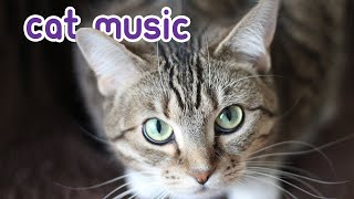 HALF A DAY of Relaxing Cat Music - Cat Sleep Songs!