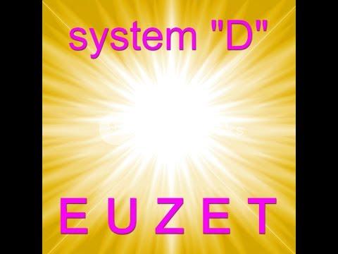 SYSTEM-D - Didier EUZET (1726)