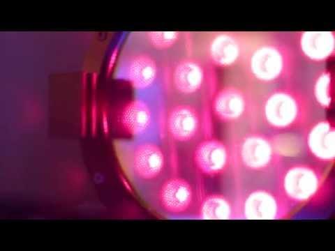 Barbizon Lighting at Plasa Focus Orlando