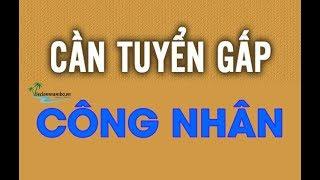 TUYỂN CÔNG NHÂN | Không yêu cầu trình độ & Kinh nghiệm | Công Ty TNHH Công Nghiệp Bắc Giai Việt Nam