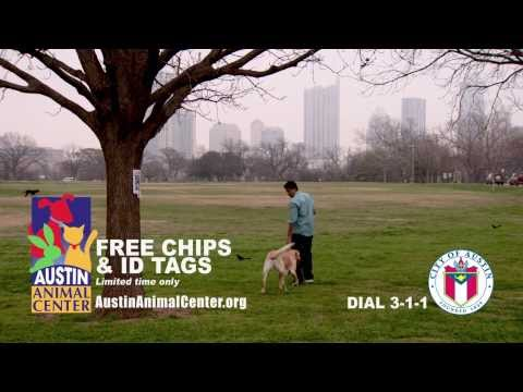 Austin Animal Shelter - Maddie's Day Out