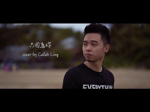 Nicholas 张栋梁 《只因为你》 (翻唱 Cover) 林志豪 Caleb Ling