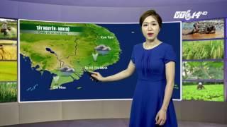 (VTC14)_Thời tiết Nông  vụ ngày 26/07/2017 | Bản tin dự báo thời tiết
