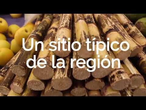 Este domingo lánzate a Acaxochitlán, disfruta su saber